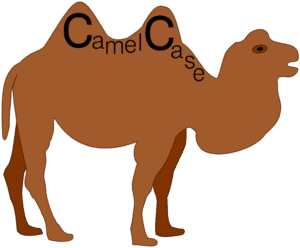 camel with camel case written on it