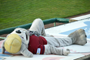 tired mascot